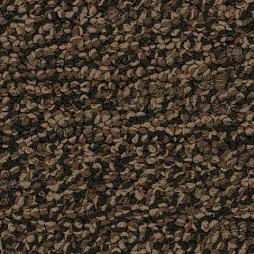 10129 Iced Cocoa