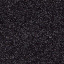 10193 Charcoal