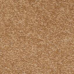 10198 Honeycomb
