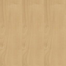 11061 Maple