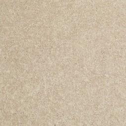11095 Wild Dune