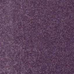 11117 Purple Passion