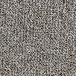 11162 Winter Wheat