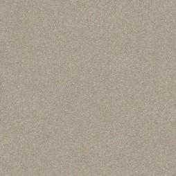 11643 Gray Beige