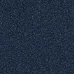 11659 Moody Blue