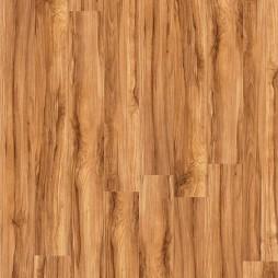 12008 Brushwood