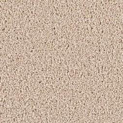 12703 Sandpiper