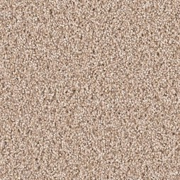 12713 Pebble Stone