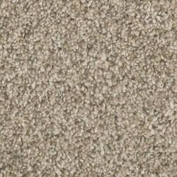 12894 Sand Swept