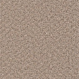 12929 Taupe