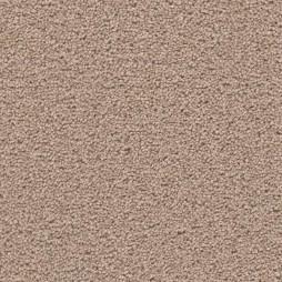 12930 Tumbleweed