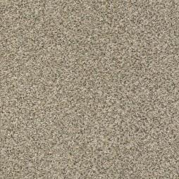 13090 Sea Salt
