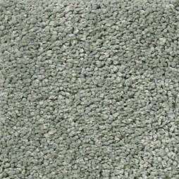 13400 Eucalyptus