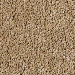 13405 Summer Wheat