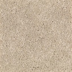 13642 Tawny Bisque