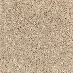 13648 Wheat