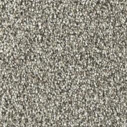 14431 Greystone