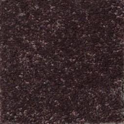 14665 Cocoa