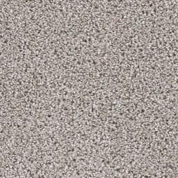14681 Canvas