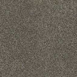 15049 Sesame