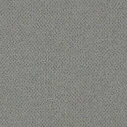 15354-Moon-Dust