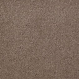 5403 Taupe