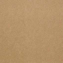 5412 Canvas