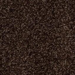 8091 Eclair