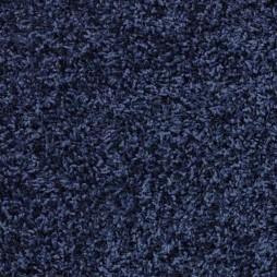 8103 Blue Beauty