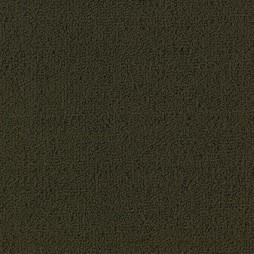 8704 Olive