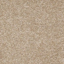 9013 Taupe