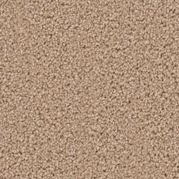 9611 Canvas