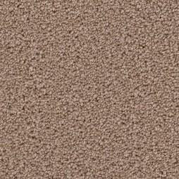 9615 Shimmer