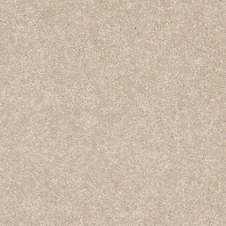 9711 Canvas