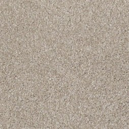 9818 Taupe