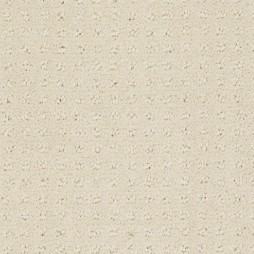 9936 Summer White